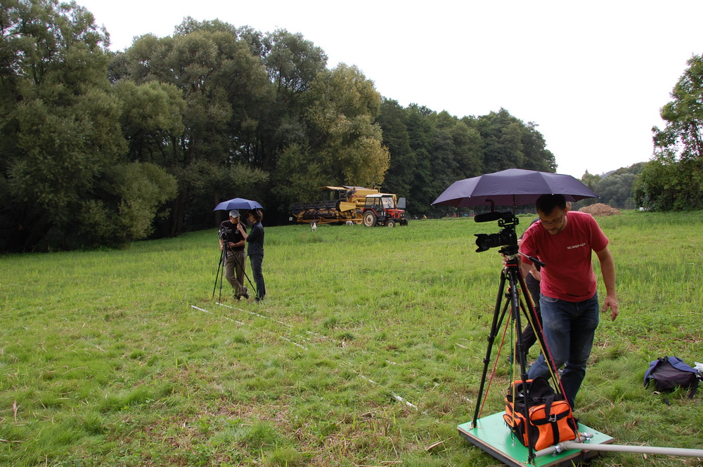 Shooting even during rain and harvester sound (in the background).